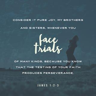 James 1.2 3